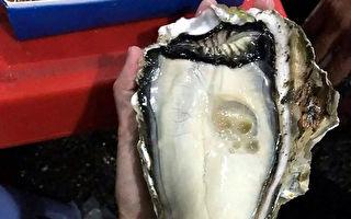 蚵仔, 牡蛎, 巨无霸, 巨无霸蚵仔, 巨无霸牡蛎