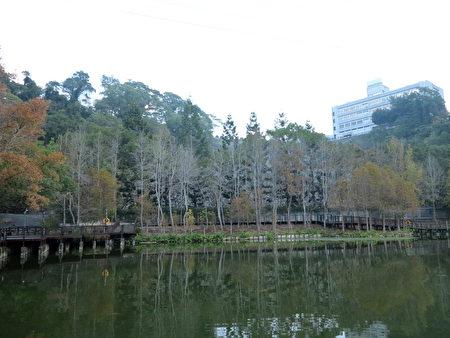 走到車埕老街的盡頭,一池淺綠的湖水就靜靜地等候在那裡。(鄧玫玲/大紀元)