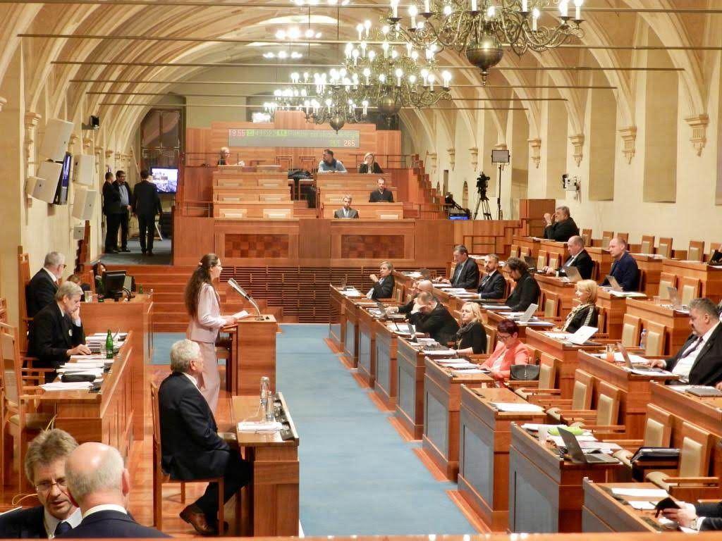 捷克法輪大法學會發言人婉洛尼卡‧蘇諾娃(中站立者)在參議院發言。(明慧網)