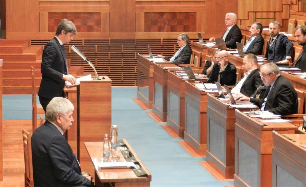 捷克參議員馬克‧黑爾茨(左站立者)在參議院發言。(明慧網)