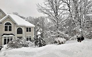 合欢山下雪2小时不够看 网友晒美国厚积雪照
