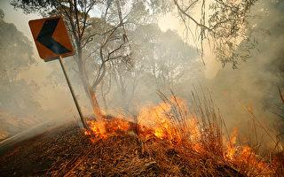 澳维州境内林火肆虐 天气条件不利灭火