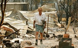 维州山火殃及40余城镇 4万公顷林地被毁