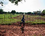 美智库:见证历史 社会主义如何毁掉非洲
