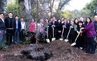 圣马利诺华协植树节种树造福社区