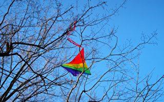今月:風箏