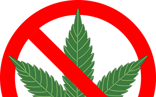 高中生伊州首府集會 反對大麻合法化