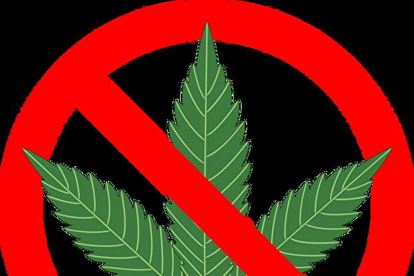 高中生伊州首府集会 反对大麻合法化