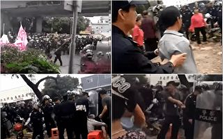 广东村民昼夜护耕地 数百警察带警犬镇压