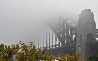 悉尼週三大霧海陸空交通受阻 輪渡取消