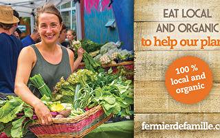 吃得新鮮健康 魁省家庭農場提供有機菜籃