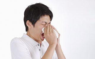 健腦護鼻操打穴道 遠離過敏性鼻炎