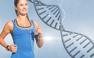 研究找到苗條基因 新一代減重藥物開發在即