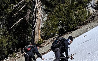 春遊驚魂  華人登山裝備不足險困雪山