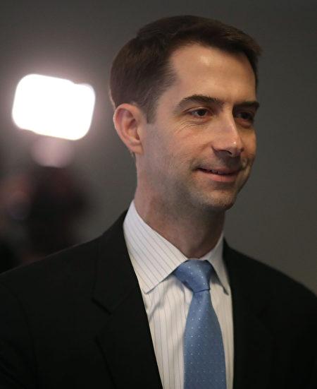 共和黨參議員柯頓(Tom Cotton)。 (Mark Wilson/Getty Images)