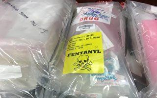 中共將於5月1日起,把芬太尼類物質列入毒品管制範圍進行管控,以回應華府的強烈要求。圖為美國檢察官辦公室查獲的太芬尼毒品。(David L. Ryan/Getty Images)