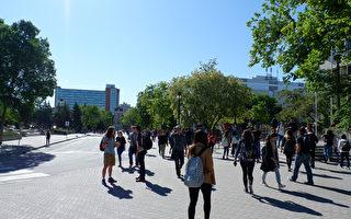 墨爾本部分郊區嚴重依賴留學生 經濟將遭重創