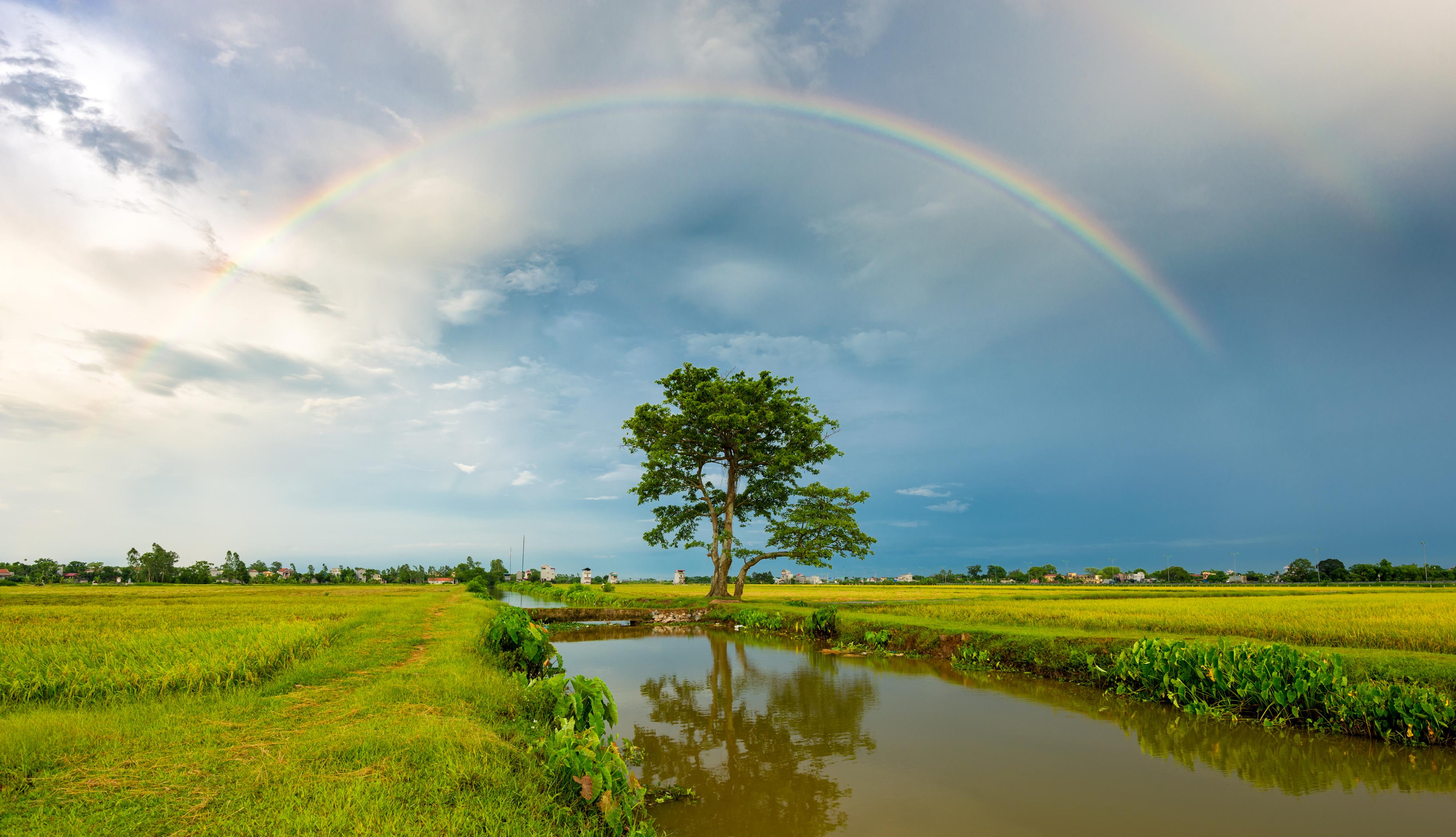 彩虹。(shutterstock)