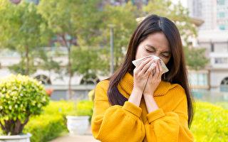 季节性过敏的5种天然良药
