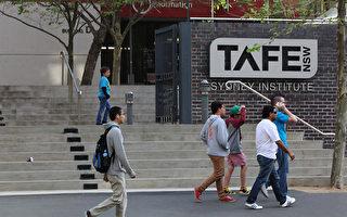 TAFE入學者大減 高中畢業生深造降新低