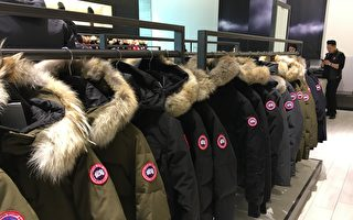 收入低于预期 加拿大鹅股价暴跌