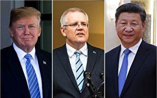 中美关系持续恶化 专家展望澳中关系前景