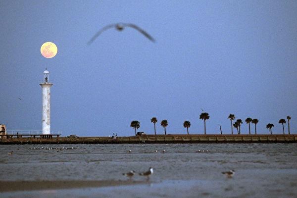 佛羅里達欲免費贈送昔日燈塔