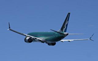 美航空官员认为撞鸟或是埃航坠机原因
