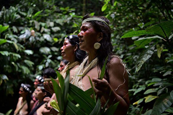 2019年4月,瓦拉尼部落在库拉赖河畔唱歌,反对石油公司侵占雨林。(RODRIGO BUENDIA/AFP/Getty Images)