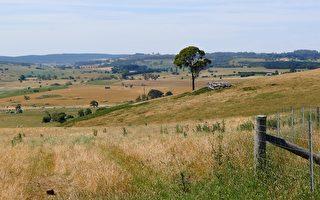 氣象局預測澳洲暖冬將臨 氣候乾燥霜降增多