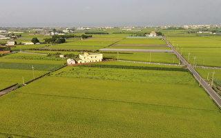 农民缺地耕作 台农委会:打造农地租赁平台