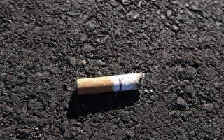 車窗扔菸頭 墨爾本男子需繳千元