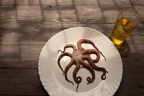 陆女吃活章鱼遭吸脸破相 专家警告祸从口入