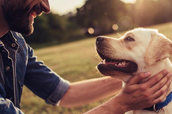 示意图。(Shutterstock)