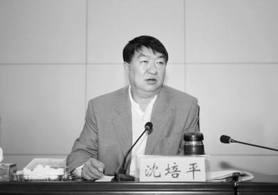 雲南前副省長沈培平被指控受賄1615餘萬元,一審宣判處有期徒刑12年。(網絡圖片)