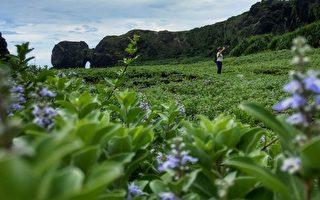 遺世獨立之美 攝影師推薦綠島祕境