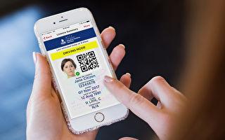 數字化駕照或於8月起在新州推廣