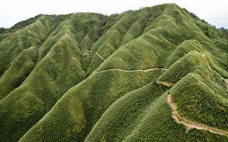 台灣秘境:聖母山莊登山步道