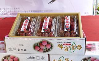 台中荔枝再销日本 甲壳素镀成技术成关键