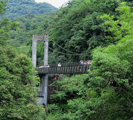 长长的吊桥,隐身在翠绿地山谷间。