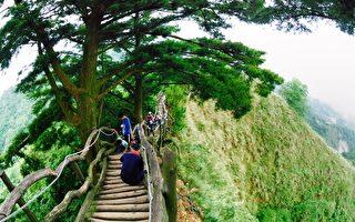 大坑5-1號步道整建 貼近自然生態