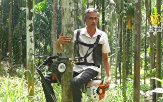 如同樹上騎機車!新發明「爬樹機」採檳榔