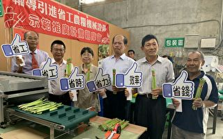 全國第一部蘆筍組合計量機 提高5倍作業效率