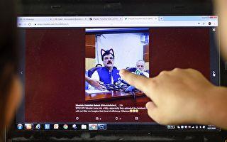 巴基斯坦官方会议直播开猫脸滤镜 网友笑翻