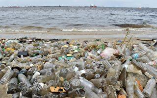 長50米寬35米 日本沙雕報紙為海洋生態呼籲