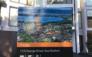 悉尼房产市场现回暖迹象 市场已触底了