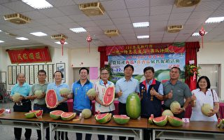 新豐鄉西瓜評鑑賽  李國興34.05台斤封王