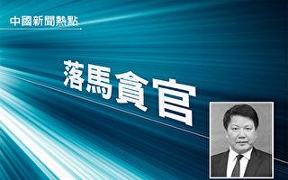 中共海南省人民医院前党委副书记、院长李灼日受贿一案开审。(大纪元合成)