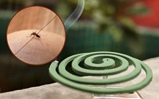常见4大防蚊物品用对了吗?这样用驱蚊最有效