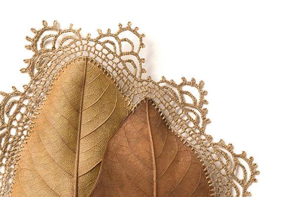 英国生活艺术家苏珊娜·鲍尔(Susanna Bauer)用钩针在叶子上大胆创作,令网友惊艳。(Courtesy of Susanna Bauer)